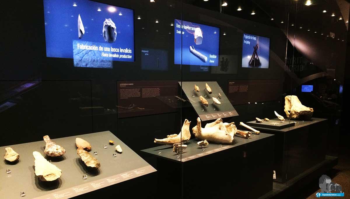 "sala de exposición"" Prehistoria "" Museo de San Isidro de Madrid"
