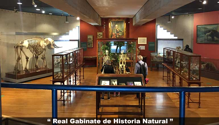 Real Gabinete de Historia Natural