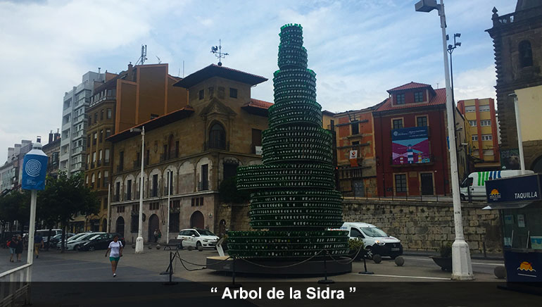 Arbol de la Sidra