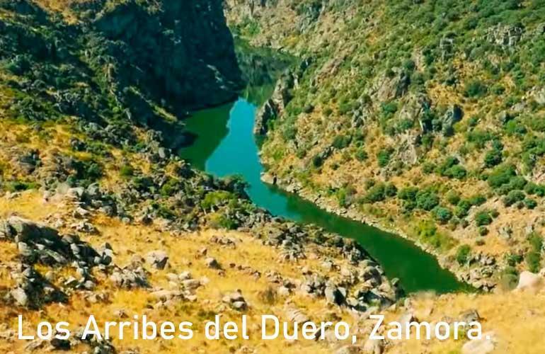 Los Arribe del Duero, Zamora.