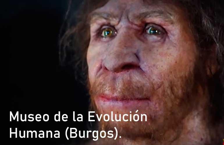 Museo de la Evolución, Burgos