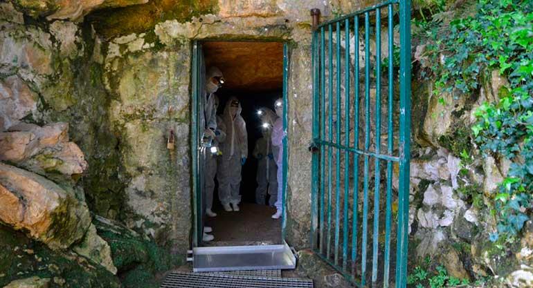 Entrada original de la Cueva de Altamira