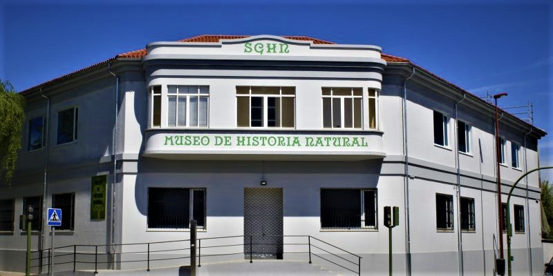 ferrol-museo-historia-natural